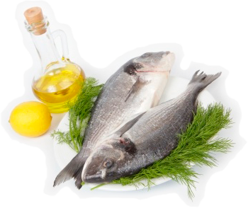 All about fish oil for What is the best fish oil to take